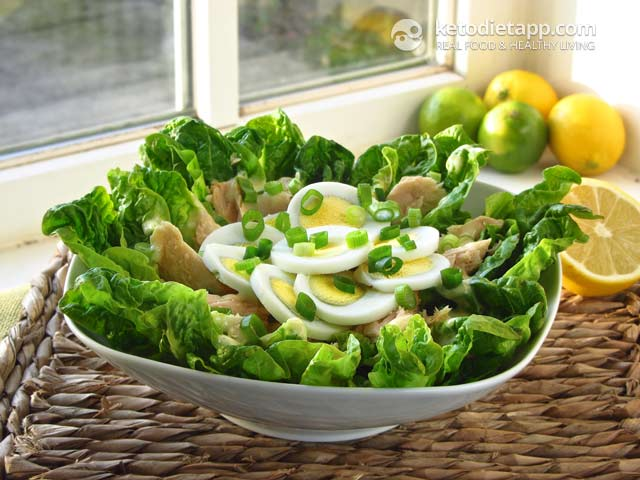 Keto tuna salad the ketodiet blog for Tuna fish salad recipe with egg