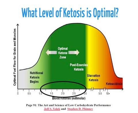 Ketosis & Measuring Ketones | The KetoDiet Blog