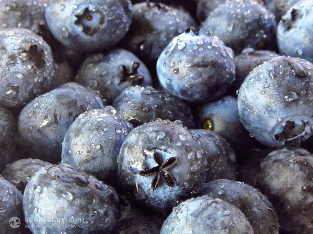 Health Benefits of Blueberries in Low-Carb Diets