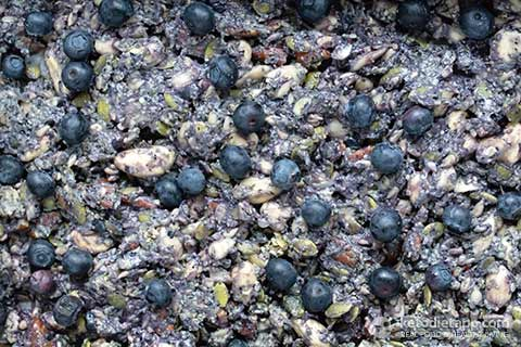 Low-Carb Blueberry Chia Crisp