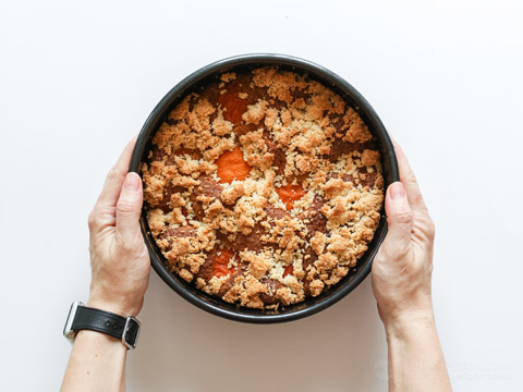 Low-Carb Apricot Crumble Coffee Cake