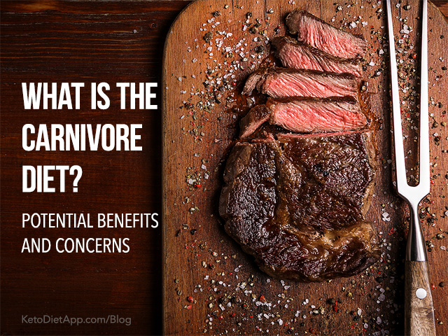 What is the Carnivore Diet? Potential Benefits and Concerns