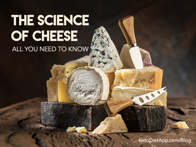 The Science of Cheese: All You Need To Know