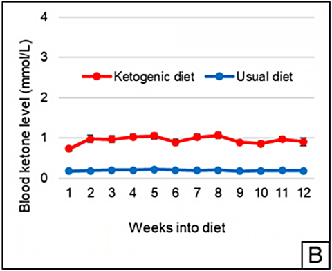 Ketogenic Diet Improves Symptoms of Alzheimer's Disease in Randomized Controlled Trial (February 2021)