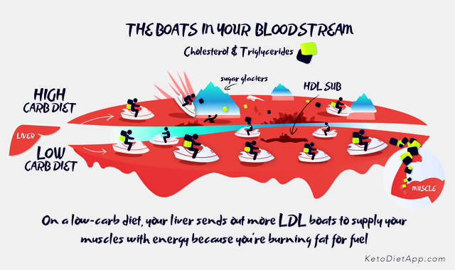 Is Cholesterol Corrupted by the Dark Side?