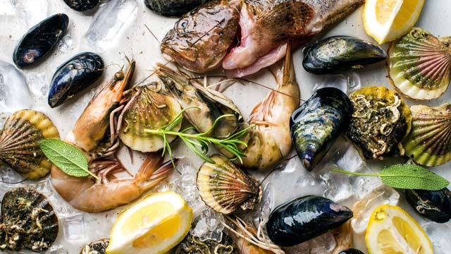 complete guide to healthy and sustainable fish  seafood