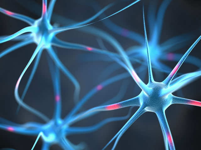 Can Ketones Protect Against Alzheimer's Disease?